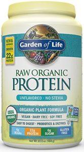 Vegetarian protein - RAW Organic Protein